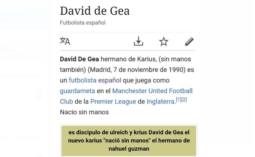 Descripción de David De Gea en Wikipedia tras error con España