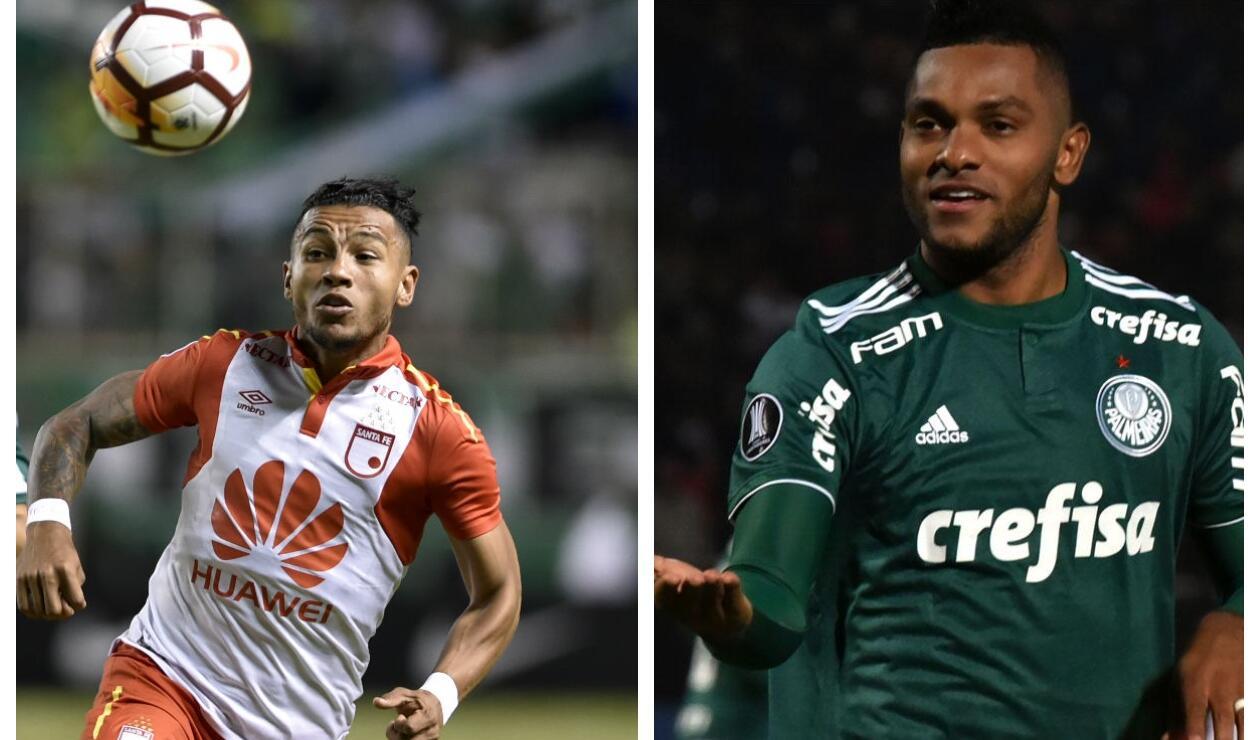 Wilson Morelo y Miguel Ángel Borja, goleadores de la Copa Libertadores
