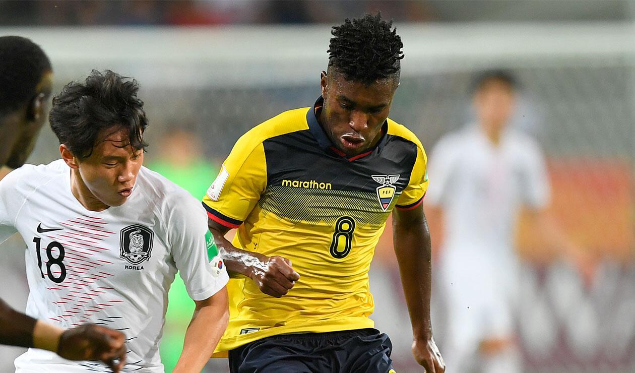 La Selección de Ecuador, semifinalista del Mundial sub 20.