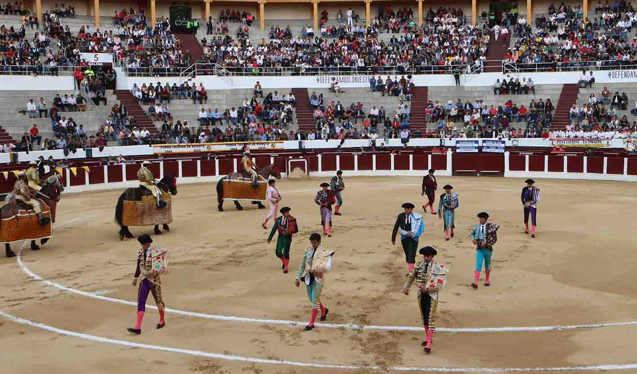 Toros Bogotá 2020