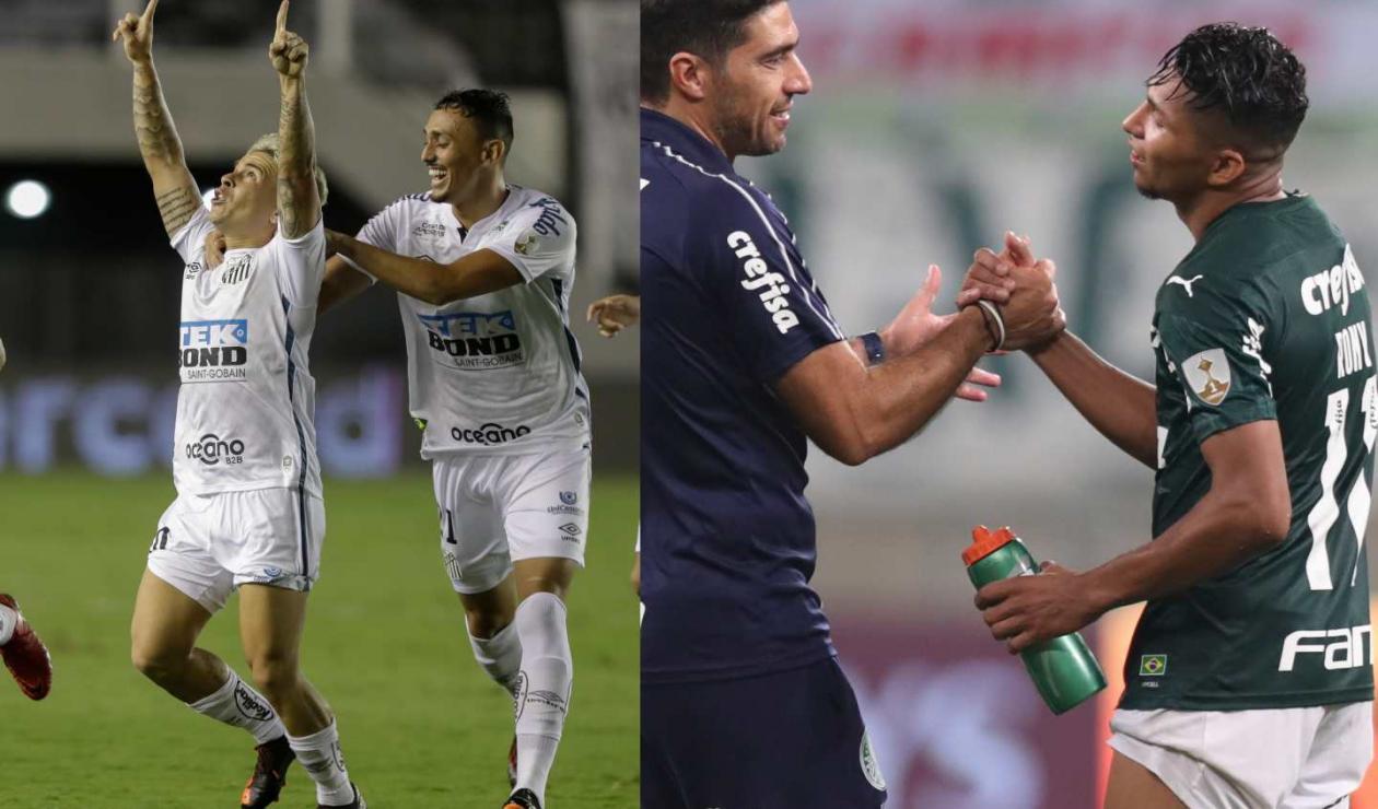 Libertadores Palmeiras Vs Santos D U00f3nde Ver El Partido