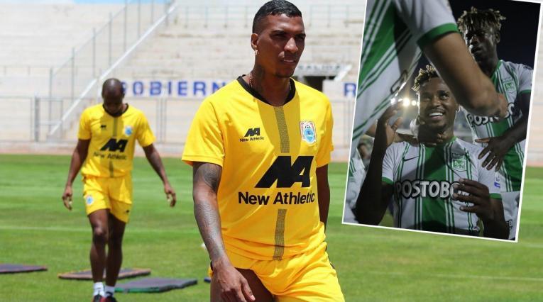 Johan Arango, Atlético Nacional