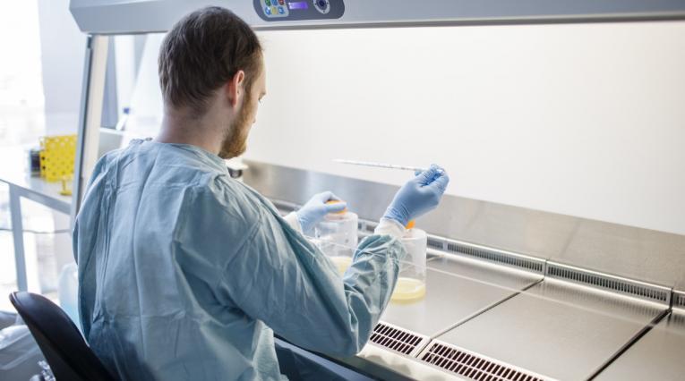 Ensayo de vacuna contra coronavirus