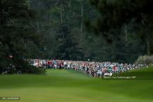 Tiger Woods superó a Dustin Johnson y Brooks Koepka