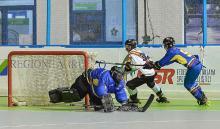 Selección Colombia de hockey en línea