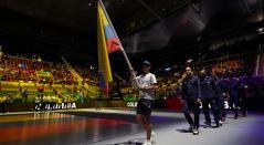 Copa Davis Colombia