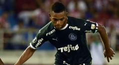 Miguel Ángel Borja, Palmeiras
