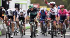 UCI, Ciclismo