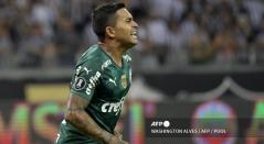 Palmeiras finalista Libertadores